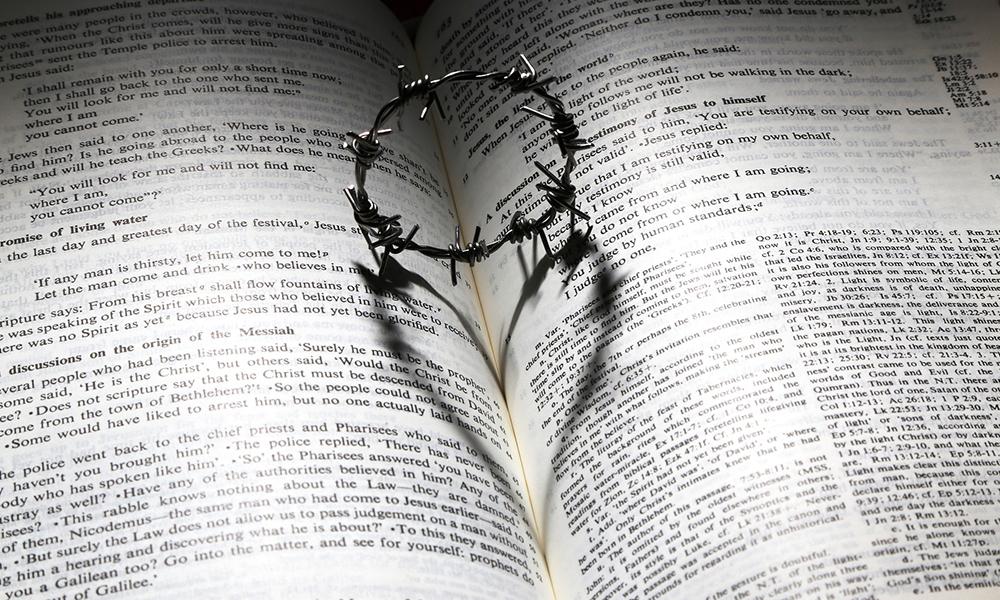 thorn-heart-bible